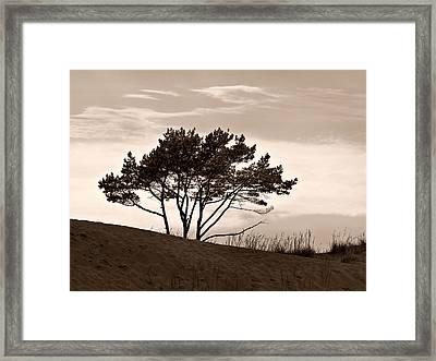 Framed Print featuring the photograph Yyteri Evening by Jouko Lehto