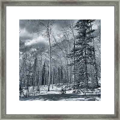 Land Shapes 35 Framed Print