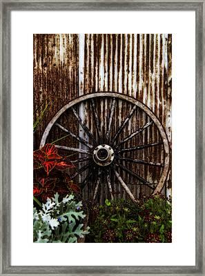 Zahrada Framed Print