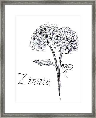 Zannie Zinnia Framed Print