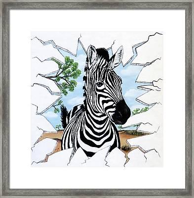 Zany Zebra Framed Print