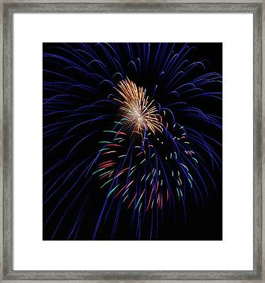 ZAP Framed Print by Donna Shahan
