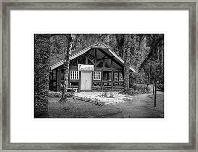 Zarabatana-bosque Do Silencio-campos Do Jordao-sp Framed Print