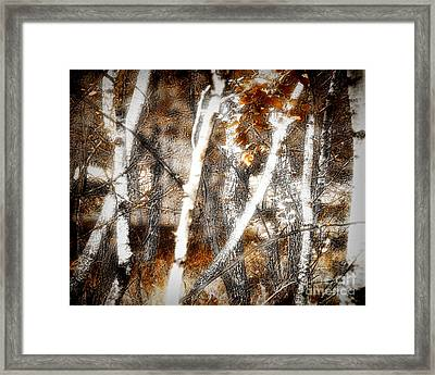 Zauberwald Hexentanz Magic Forest Witches Dance Framed Print by Mimulux patricia no No