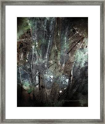 Zauberwald Vollmondnacht Magic Forest Night Of The Full Moon Framed Print