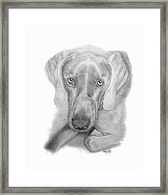 Framed Print featuring the drawing ZEB by Mike Ivey