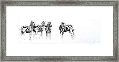 Zebbies Framed Print