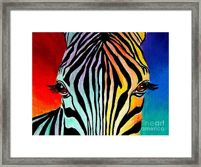Zebra - End Of The Rainbow Framed Print