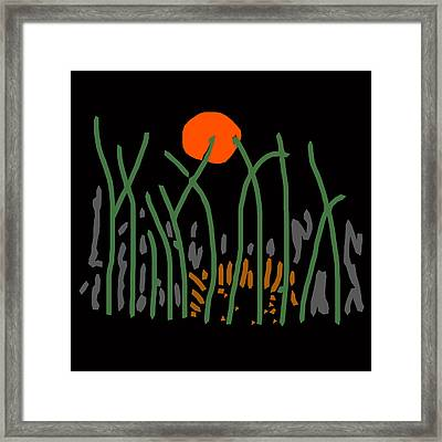 Zebra Among The Trees Framed Print by James Hill