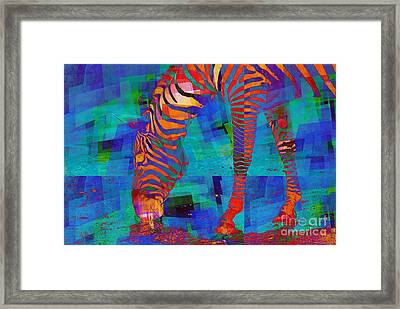 Zebra Art - 44 Framed Print by Variance Collections