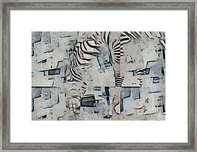 Zebra Art - 52spt Framed Print by Variance Collections