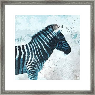 Zebra- Art By Linda Woods Framed Print