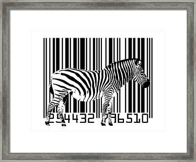 Zebra Barcode Framed Print by Michael Tompsett