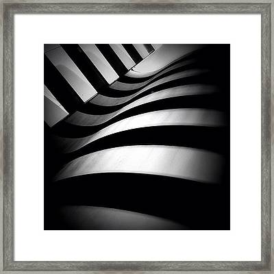 Zebra City - Concrete Jungle Framed Print