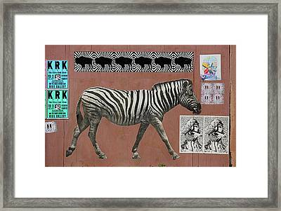 Framed Print featuring the photograph Zebra Collage by Art Block Collections