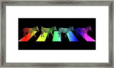 Zebra Crossing Pop Art On Black Framed Print by Gill Billington