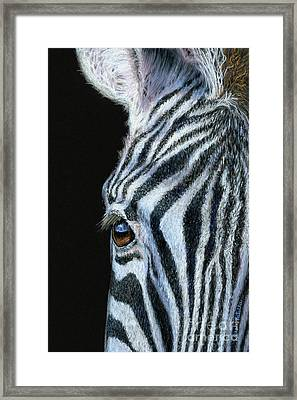 Zebra Detail Framed Print