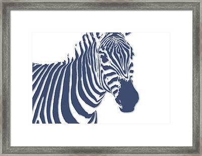 Zebra Framed Print by Joe Hamilton