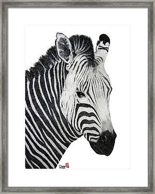 Zebra Framed Print by Joung Sik Chun