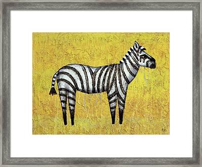 Zebra Framed Print by Kelly Jade King