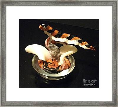 Zebra Knife Fish Framed Print