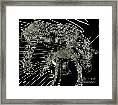 Framed Print featuring the photograph Zebra Momma And Baby  by Irma BACKELANT GALLERIES