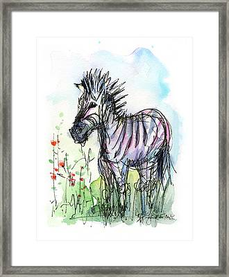 Zebra Painting Watercolor Sketch Framed Print by Olga Shvartsur
