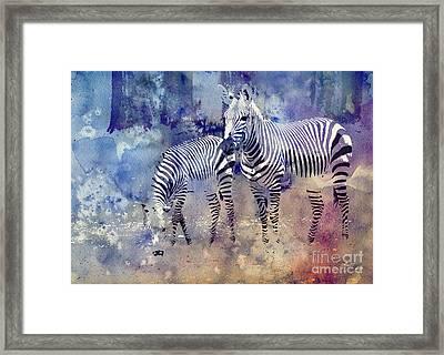 Zebra Paradise Framed Print by Jutta Maria Pusl