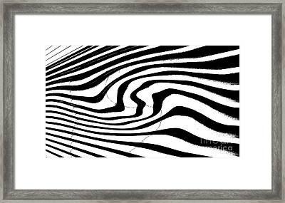 Zebra Pattern   Black And White Framed Print by Mark Hendrickson