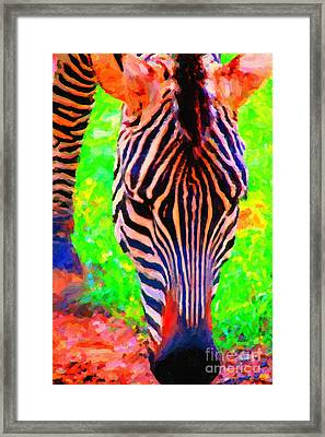 Zebra . Photoart Framed Print by Wingsdomain Art and Photography