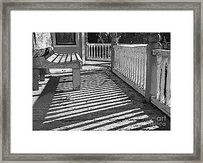 Zebra Porch Framed Print by Betsy Zimmerli