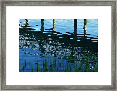 Framed Print featuring the photograph Zebra Reflections by Phil Mancuso