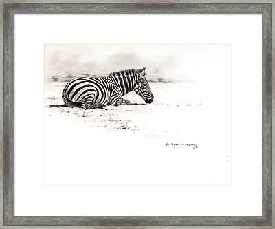 Zebra Sketch Framed Print