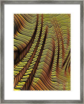 Zebra Stripe Yellow Framed Print