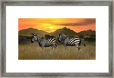 Zebra Sunset Framed Print