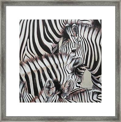 Zebra Triptyche Left Framed Print by Leigh Banks