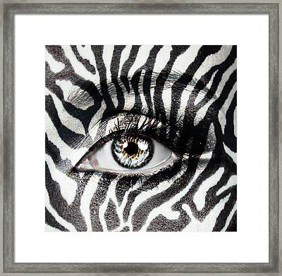 Zebra  Framed Print by Yosi Cupano