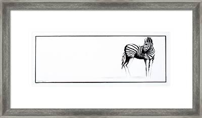 Zebra3 Framed Print