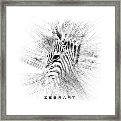 Zebrart Framed Print