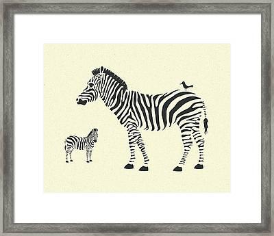 Zebras Framed Print by Jazzberry Blue