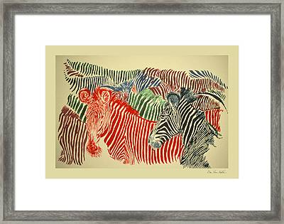 Zebras Of A Different Color Framed Print