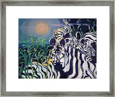 Zebras On The Savanna Framed Print by Julie Todd-Cundiff