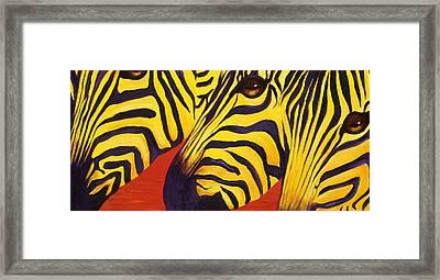 Zebras Watching Framed Print