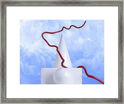 Zen 10 Framed Print