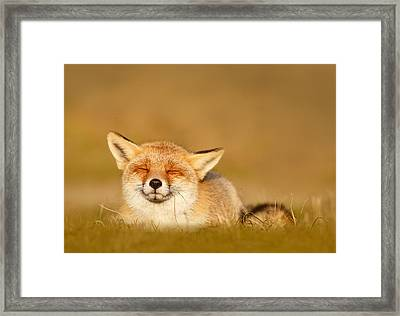 Zen Fox Series - Chill Fox Framed Print by Roeselien Raimond