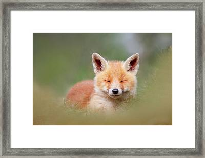 Zen Fox Series- Happy Baby Fox Framed Print