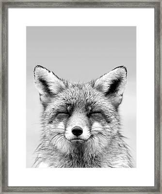 Zen Fox Series - Smiling Fox Portrait Bw Framed Print by Roeselien Raimond