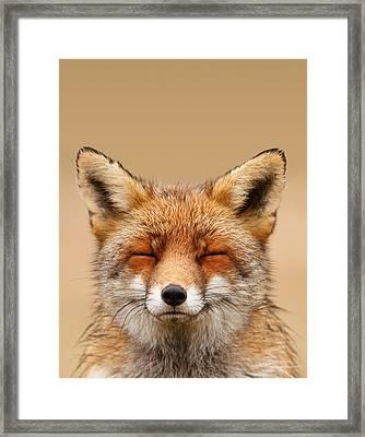 Zen Fox Series - Smiling Fox Portrait Framed Print by Roeselien Raimond