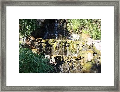 Zen Garden Framed Print by Julie Alison