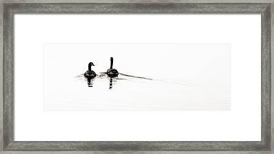 Zen Geese Framed Print